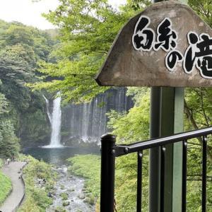 ヒントなしで漢字が読めました!