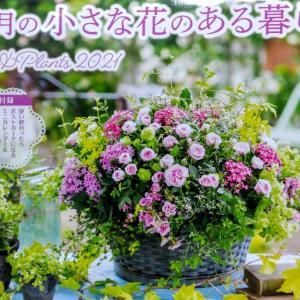 憧れの園芸家☆黒田健太郎さん