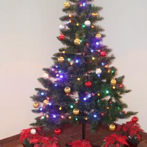 クリスマスシーズン到来@トリニダード・トバゴ