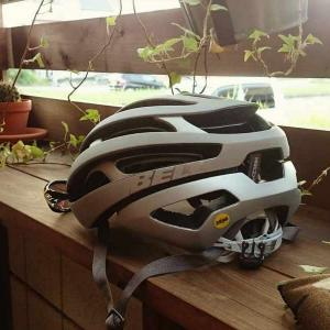 【データが実証】ヘルメットで怪我は防げるのか?