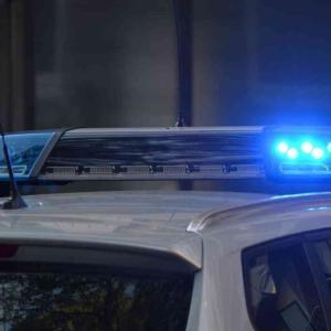 フルーネヴェーヘンと世間の悪意。警察の身辺警護と事件後の生活