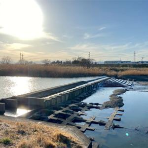 入間川 冬の散歩記録(4)雁見橋〜平塚橋〜落合橋