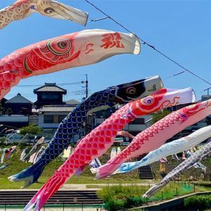 新河岸川養老橋、川の上を鯉のぼりが泳ぐ