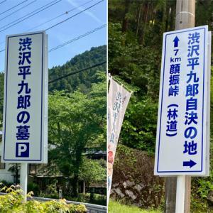 「渋沢平九郎の最期」を訪ねて越生・黒山・顔振峠へ