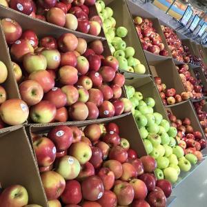 ミシガンのリンゴ色々