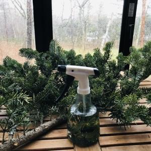 空気を浄化してくれるモミのルームスプレー