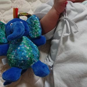 産後20日経ちました