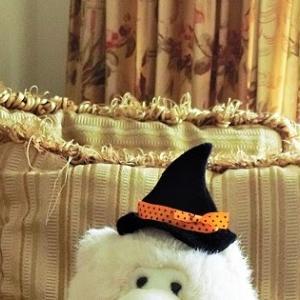 ハロウィンのお洋服作り5 ♪ マロンの衣装はスパイダーと大きなおばけカボチャが2つ!
