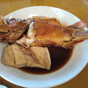 保田「栄丸」煮魚がすごい~