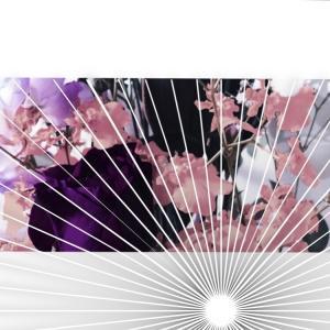 随時更新)8月[ジャニーズ事いろいろ記録](ライブ見学・エピソード・騒動、見解ツッコミ感想)(※最終更新8/6)