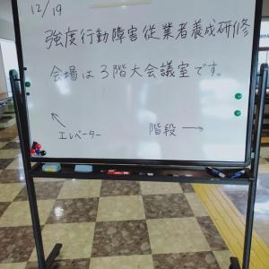 強度行動障害支援者養成講習に行ってきた (実践研修編)