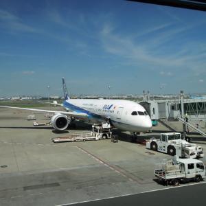 次はイタリアに行きたい!ANAのミラノ直行便なら初めての外国旅行でも安心!