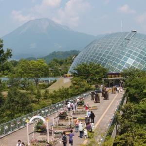 「蔵旅」 鳥取県・とっとり花回廊