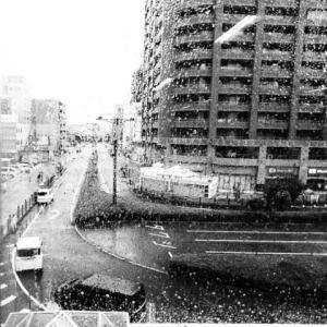 台風14号の影響