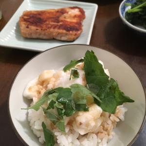 とろろかけご飯、さつま揚げとキャベツの煮物、サーモン漬け焼き、モロヘイヤのおひたし、抹茶寒天バナナ、お茶