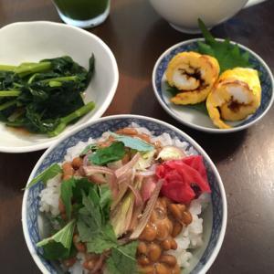 納豆かけご飯、モロヘイヤのおひたし、ミニ伊達巻風、味噌汁