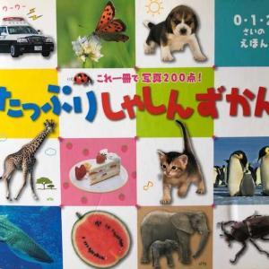 5歳児と 見飽きた図鑑を楽しむ方法