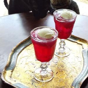 赤紫蘇フロートと、見返り美猫♪