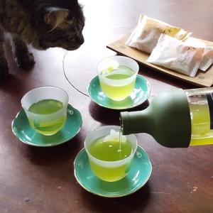 水出し緑茶にハマり中♪