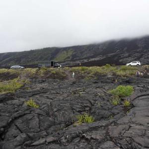 ハワイ4日目。午後。ハワイ島の溶岩大地。