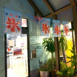 【番外編・群馬県高崎市】かき氷食べに行ったらケーキが出てきた?!〜花暦氷本舗さん〜