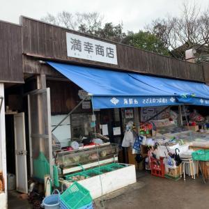 【海鮮・和歌山市】かわいいデカ盛り?!しらす丼とあわしま丼!!〜満幸商店さん〜