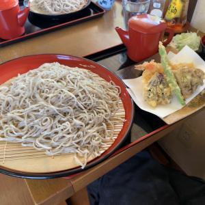 【そば・小諸市】透き通った麺と強いコシ!ボリュームもあるいなかそば!!〜なごみやさん〜