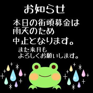 【雨のため中止】平猫街頭募金