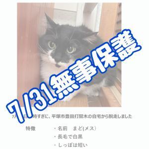 7/31まどちゃん無事保護