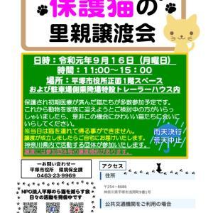 今年も開催!平塚市役所譲渡会2019