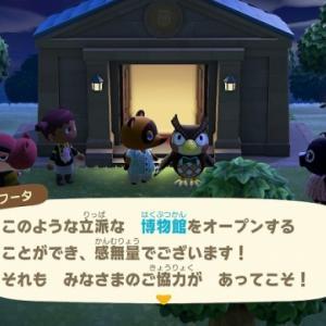 【あつ森】3:タヌキ商店のある無人島