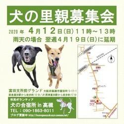 4月12日(日)高槻市富田支所前広場での里親募集会