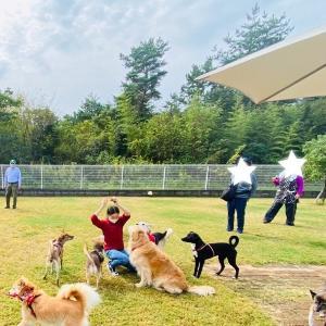 犬の合宿所 IN 琵琶湖の庭 ②