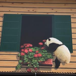 【休憩】バタバタ貧乏暇なし、鬼怒川トリックアート近くの浄化槽点検で
