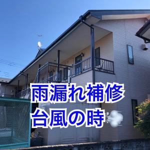 【なんでも屋】昨日催促され、雨漏れ補修、台風の時の事「もぐらたたき」に