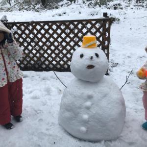 【雪】日光市天気予報通り雪景色雪だるま作って元気な孫