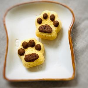 犬のフードジプシーをしている人におすすめ!日本ペット栄養学会