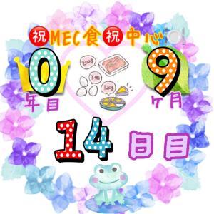 新MEC食9ヶ月14日目!フル活動勤務とMEC食で...【total−13.8㎏】