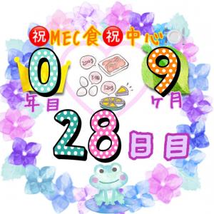 新MEC食9ヶ月28日目!カウントダウン開始!やっぱりMEC食が一番♪【total−??㎏】