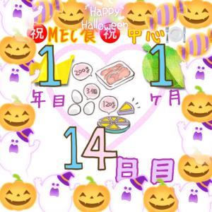 新MEC食1年1ヶ月14日目!−400g!規定量MECで凄い効果☆【total−11.6㎏】