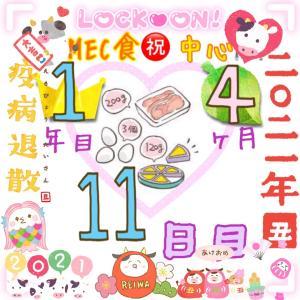 新MEC食1年4ヶ月11日目!たくさん動いて±0㎏【total−8㎏】
