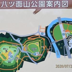 普通に八ツ面山→古川緑地へ