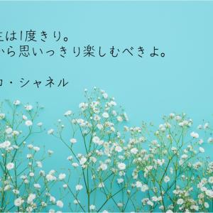 人生は1度きり。だから思いっきり楽しむべきよ。