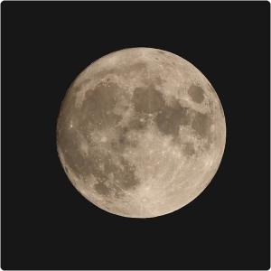 中秋の名月(1日前だけどね)