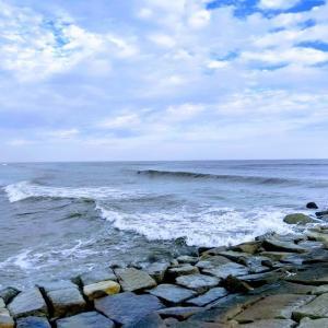 Surf Tracker2の使い方(ガーミン サーフィン)