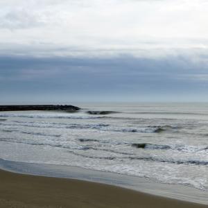 今日の千葉北波情報(20/02/20)とDVSビックフィッシュに乗るべき10の理由
