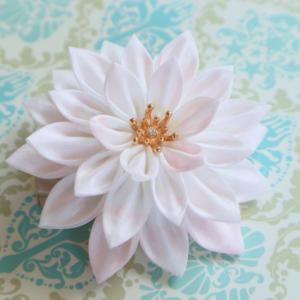 清らかな睡蓮の花のクリップのご紹介
