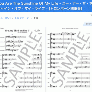 You Are The Sunshine Of My Lifeのダウンロード楽譜