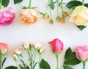 ■香水の種類:パルファム、オードパルファム、オードトワレ、オーデコロンの四つの違い