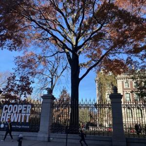 ニューヨークひとり旅⑲インタラクティブな邸宅美術館 【COOPER HEWITT, SMITHSONIAN DESIGN MUSEUM】